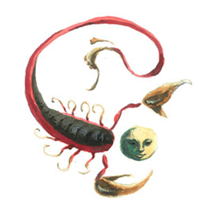 arnaud de vivies zodiaque horoscope scorpion